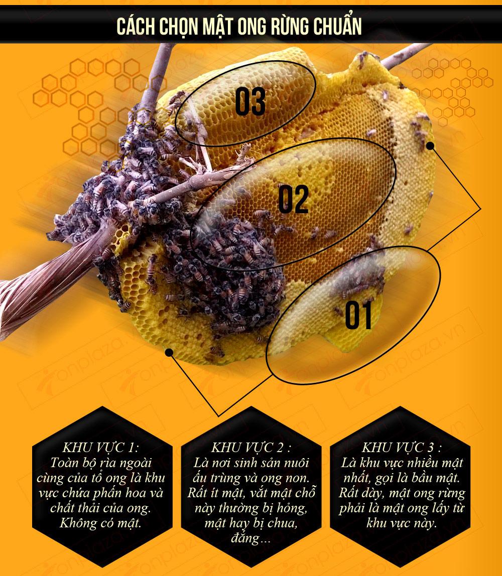 Minh họa 3 khu vực lấy mật ong.