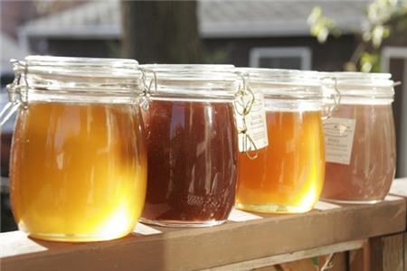 Tùy vào thời điểm thu hoạch mà mật ong rừng có màu khác nhau.