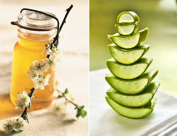 Đẩy lùi ung thư với mật ong rừng và cây lô hội 1