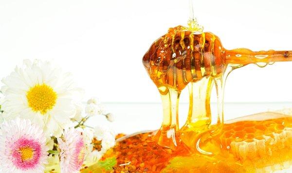 Đẩy lùi ung thư với mật ong rừng và cây lô hội 2