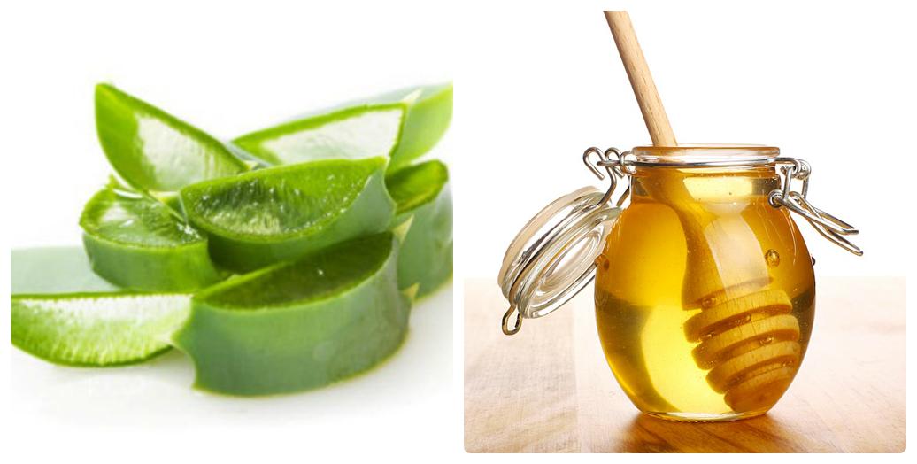 Đẩy lùi ung thư với mật ong rừng và cây lô hội 4