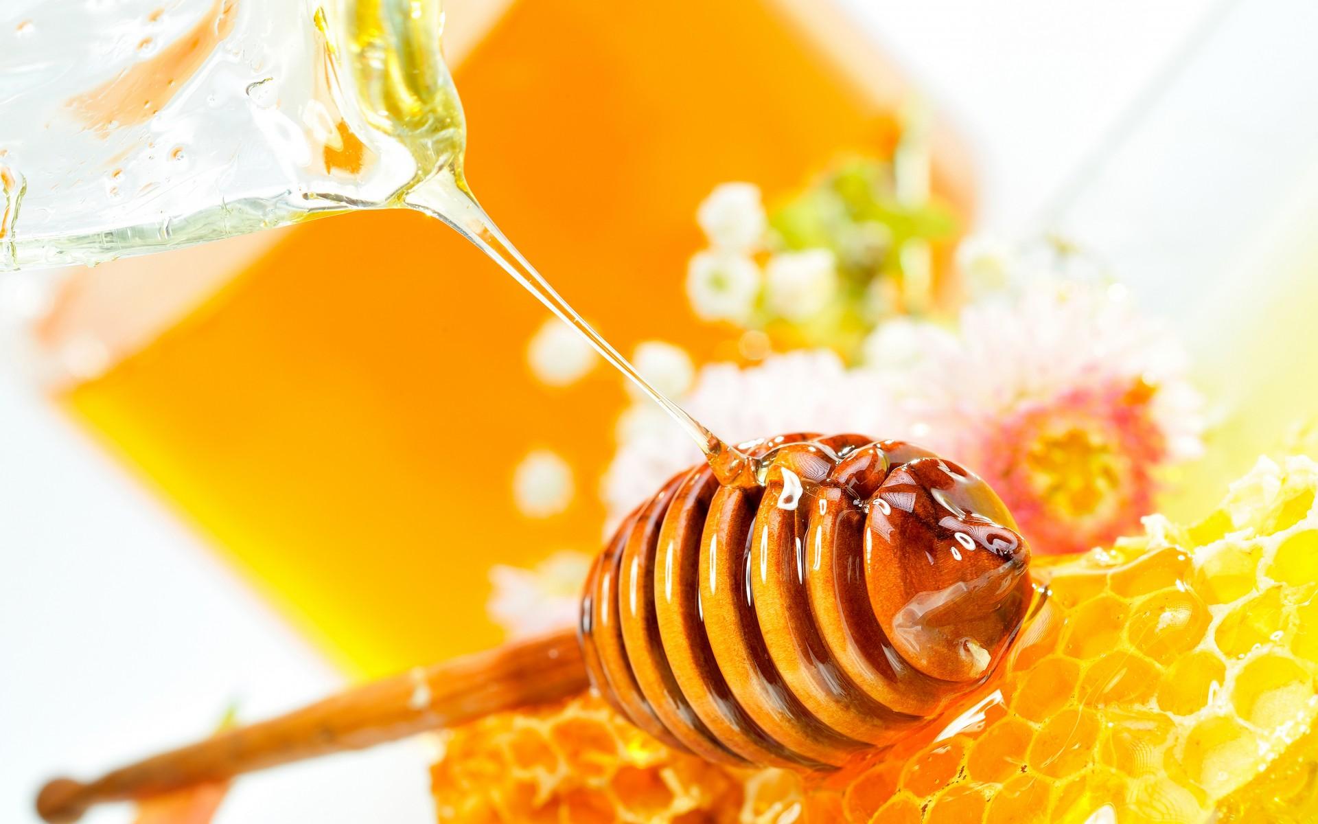 Mật ong rừng có thể bị đóng đường không 1