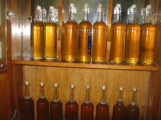 Mua mật ong rừng nguyên chất ở đâu tại Hà Nội?